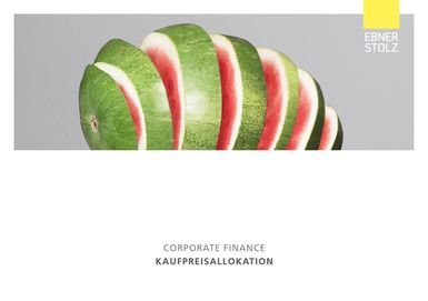Corporate Finance - Kaufpreisallokation