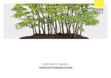 Corporate Finance - Transaktionsberatung