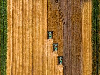 Der Agrarhandel formiert sich - ein Impulspapier von Ebner Stolz