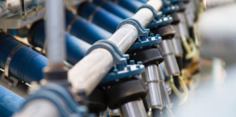 Die Zukunft der Milchwirtschaft – Expertenbeiträge in diversen Fachzeitschriften