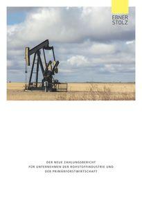 Ebner Stolz Broschüre Der neue Zahlungsbericht