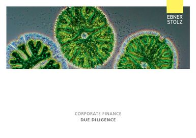 Ebner Stolz Corporate Finance - Due Diligence