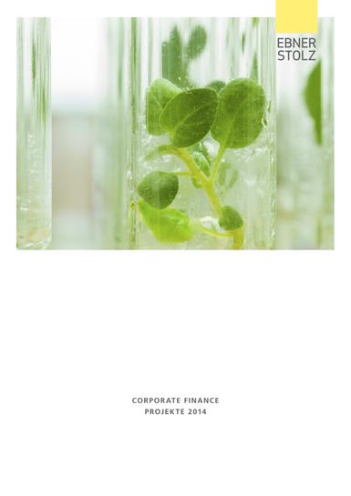 Ebner Stolz Corporate Finance Projekte 2014