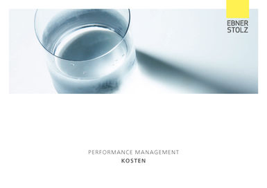 Ebner Stolz Performance Management Kosten