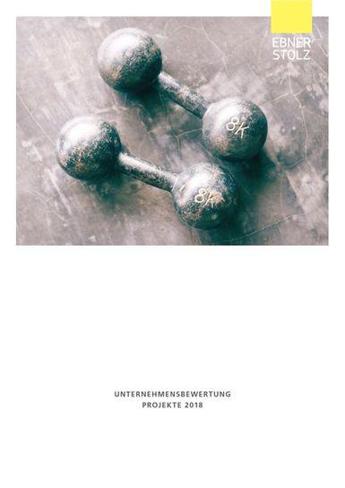 Ebner Stolz Unternehmensbewertung Projekte 2018