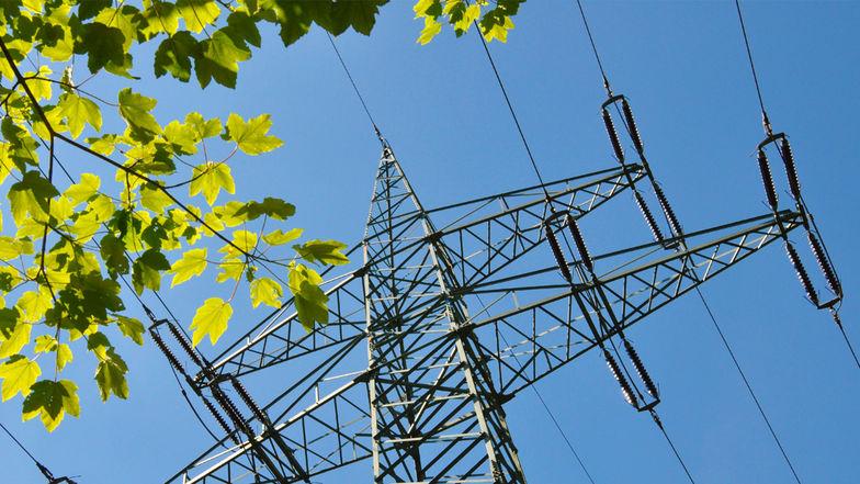 Energiesteuern und Energierecht: Update 2020