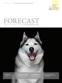 Forecast - Schwerpunkt Unternehmensführung
