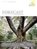 Forecast - Schwerpunkt Wachstum