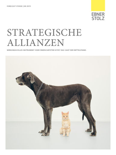 Forecast-Studie Strategische Allianzen