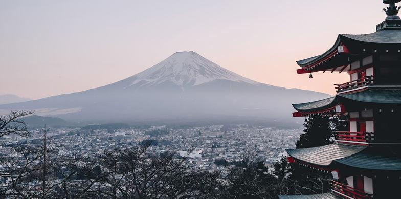 Freihandelsabkommen mit Japan: Erste Erfahrungsberichte