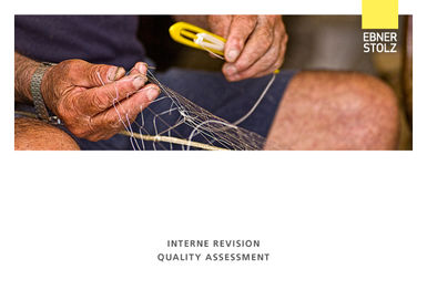 Interne Revision Quality Assessment