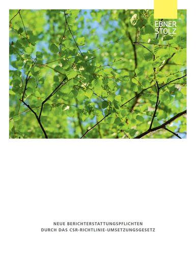 Neue Berichterstattungspflichten durch das CSR-Richtlinie-Umsetzungsgesetz