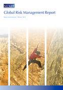 Nexia Global Risk Management Report Winter 2013